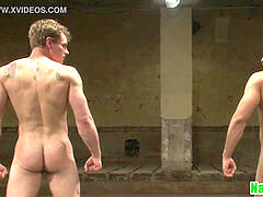 muscled jock anally boned after wrestling