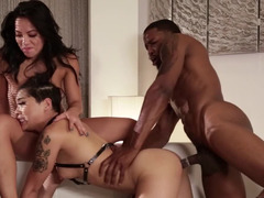 Three couples have a wild orgy with nothing off limits