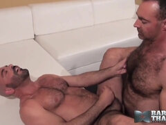 Gay Bear Bareback Sex