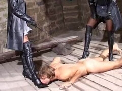 Doggy slave gets boots trampled & cropped in a dungeon